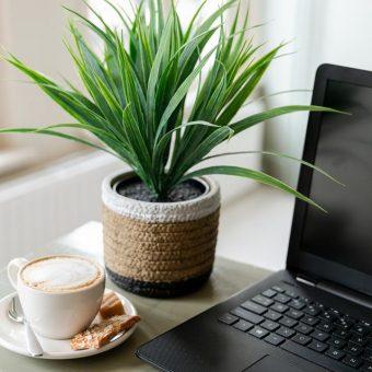 Wordpress website voor ondernemers